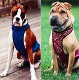 Охлаждающий нагрудник для средних/крупных собак АйсДей Дог