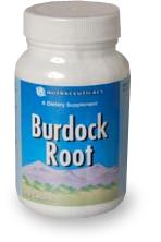 Корни лопуха / Burdock Root