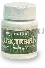 Дождевик / Langermania gigantea