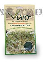 Семена брокколи калабрийской Виво